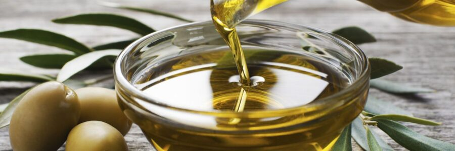 OLIVE OIL FACTORY – GRANADA SIERRA NEVADA